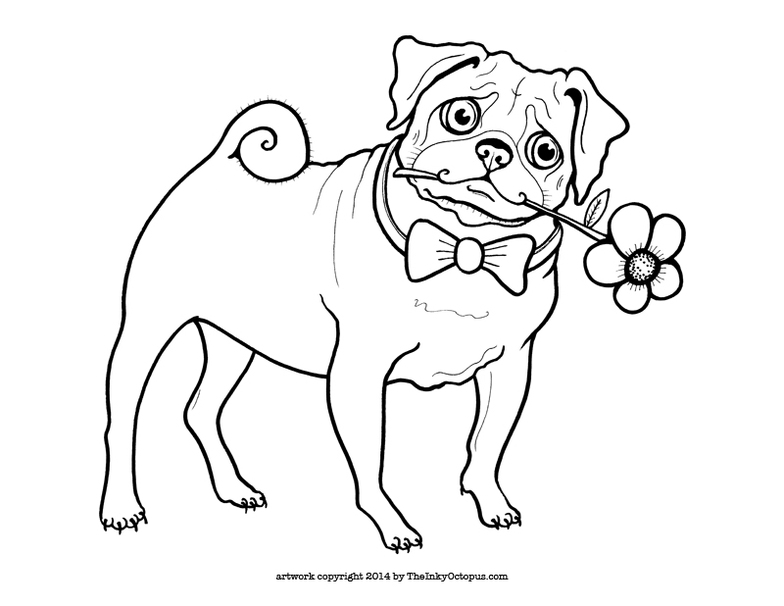pug coloring pages - photo#14
